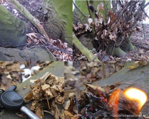 trockenes Laub zum Feuermachen