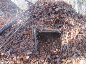 A-Frame Shelter Survival
