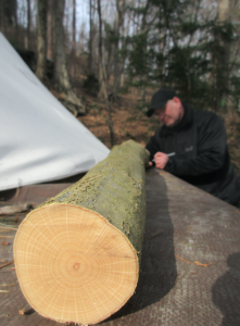 Survival Bogenbau Holzauswahl